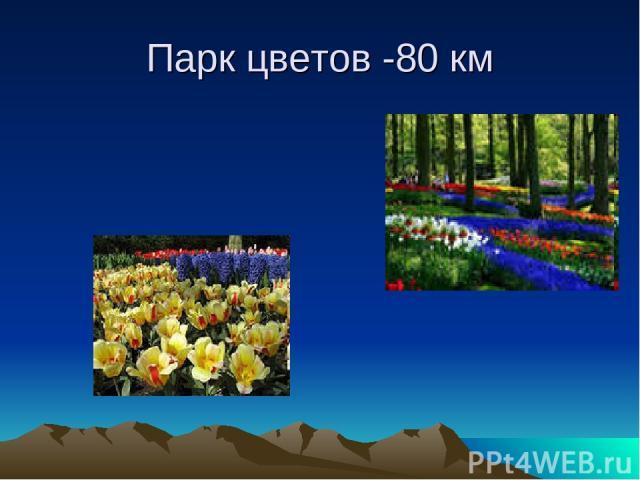 Парк цветов -80 км