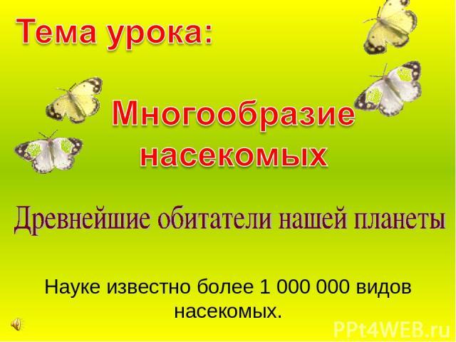 Науке известно более 1 000 000 видов насекомых.