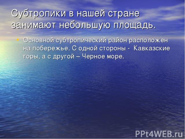 Субтропики в нашей стране занимают небольшую площадь. Основной субтропический район расположен на побережье. С одной стороны - Кавказские горы, а с другой – Черное море.