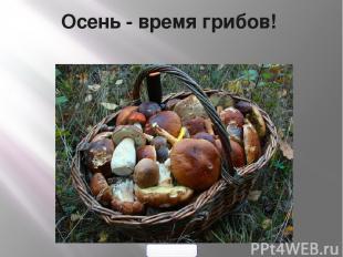 Осень- время грибов! 900igr.net