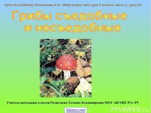 Урок по учебнику Плешакова А.А. «Мир вокруг нас» для 3 класса, часть 1, урок 22.