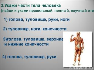 3.Укажи части тела человека (найди и укажи правильный, полный, научный ответ). 1