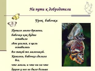 На пути к добродетели Прошло много времени, бабочка как будто оставила свои усил