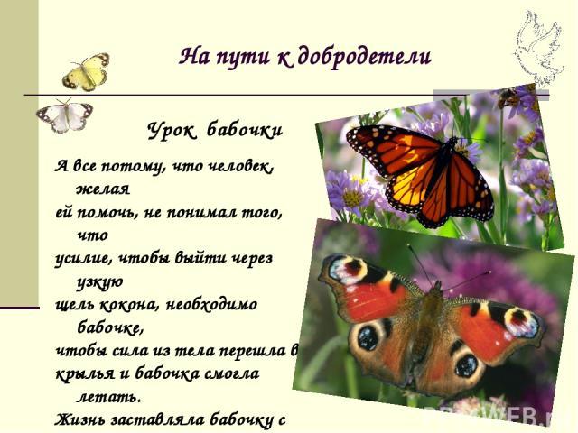 На пути к добродетели А все потому, что человек, желая ей помочь, не понимал того, что усилие, чтобы выйти через узкую щель кокона, необходимо бабочке, чтобы сила из тела перешла в крылья и бабочка смогла летать. Жизнь заставляла бабочку с трудом по…