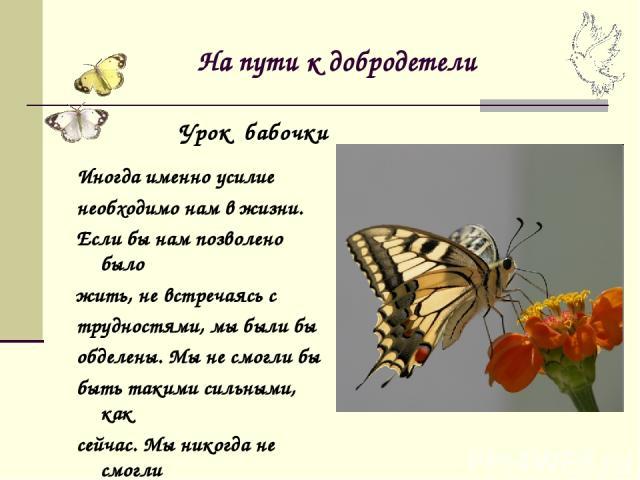 На пути к добродетели Иногда именно усилие необходимо нам в жизни. Если бы нам позволено было жить, не встречаясь с трудностями, мы были бы обделены. Мы не смогли бы быть такими сильными, как сейчас. Мы никогда не смогли бы летать. Урок бабочки