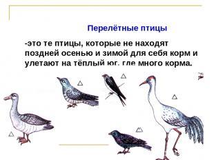 Перелётные птицы -это те птицы, которые не находят поздней осенью и зимой для се