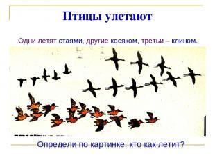 Птицы улетают Одни летят стаями, другие косяком, третьи – клином. Определи по ка