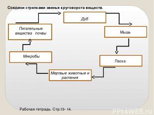Соедини стрелками звенья круговорота веществ. Рабочая тетрадь. Стр.13- 14. Питат
