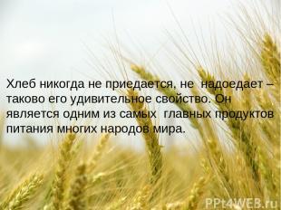 Хлеб никогда не приедается, не надоедает – таково его удивительное свойство. Он