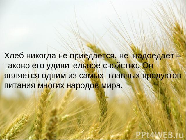 Хлеб никогда не приедается, не надоедает – таково его удивительное свойство. Он является одним из самых главных продуктов питания многих народов мира.