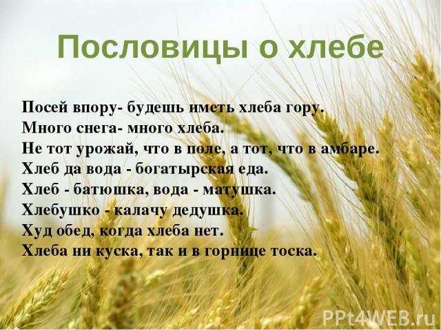 Пословицы о хлебе Посей впору- будешь иметь хлеба гору. Много снега- много хлеба. Не тот урожай, что в поле, а тот, что в амбаре. Хлеб да вода - богатырская еда. Хлеб - батюшка, вода - матушка. Хлебушко - калачу дедушка. Худ обед, когда хлеба нет. Х…