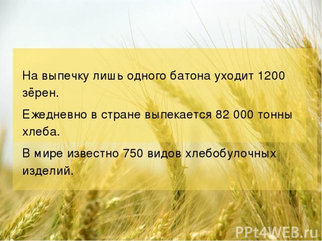 На выпечку лишь одного батона уходит 1200 зёрен. Ежедневно в стране выпекается 82 000 тонны хлеба. В мире известно 750 видов хлебобулочных изделий.
