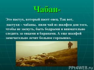 Чабан- Это пастух, который пасет овец. Так вот, пастухи – чабаны, пили чай из ша