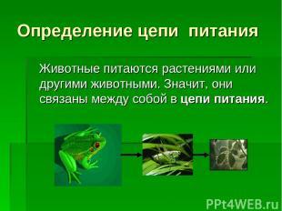Определение цепи питания Животные питаются растениями или другими животными. Зна