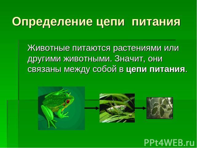 Определение цепи питания Животные питаются растениями или другими животными. Значит, они связаны между собой в цепи питания.