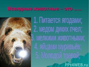 Всеядные животные – это …..
