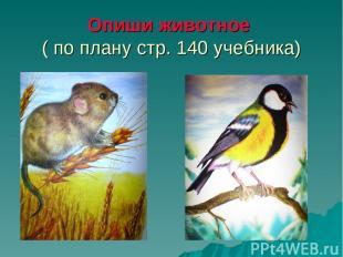 Опиши животное ( по плану стр. 140 учебника)
