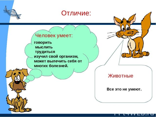 Отличие: Человек умеет: говорить мыслить трудиться изучил свой организм, может вылечить себя от многих болезней. Животные Все это не умеют.