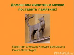 Домашним животным можно поставить памятник! Памятник блокадной кошке Василисе в