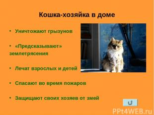 Кошка-хозяйка в доме Уничтожают грызунов «Предсказывают» землетрясения Лечат взр