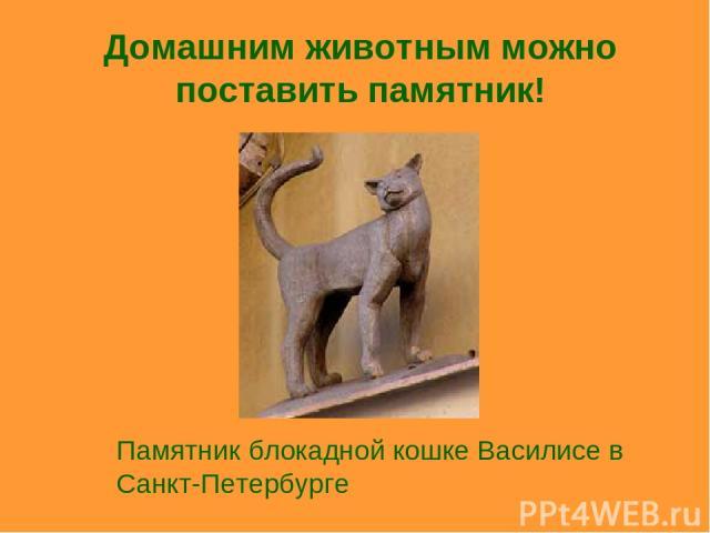 Домашним животным можно поставить памятник! Памятник блокадной кошке Василисе в Санкт-Петербурге