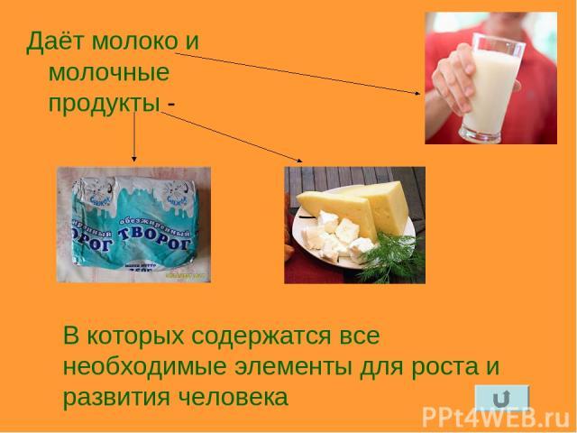 Даёт молоко и молочные продукты - В которых содержатся все необходимые элементы для роста и развития человека