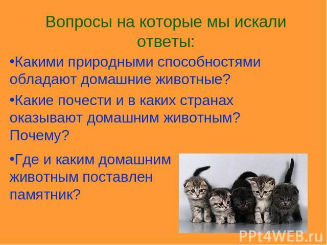Какими природными способностями обладают домашние животные? Какие почести и в каких странах оказывают домашним животным? Почему? Где и каким домашним животным поставлен памятник? Вопросы на которые мы искали ответы:
