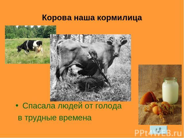 Корова наша кормилица Спасала людей от голода в трудные времена