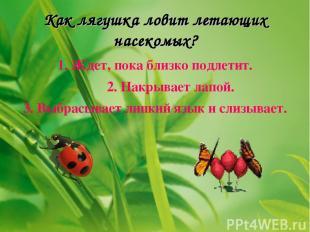 Как лягушка ловит летающих насекомых? 1. Ждет, пока близко подлетит. 2. Накрывае
