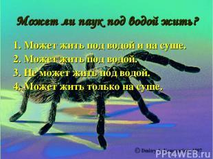 Может ли паук под водой жить? 1. Может жить под водой и на суше. 2. Может жить п