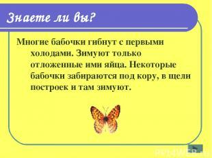 Знаете ли вы? Многие бабочки гибнут с первыми холодами. Зимуют только отложенные