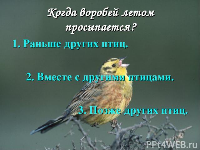 Когда воробей летом просыпается? 1. Раньше других птиц. 2. Вместе с другими птицами. 3. Позже других птиц.