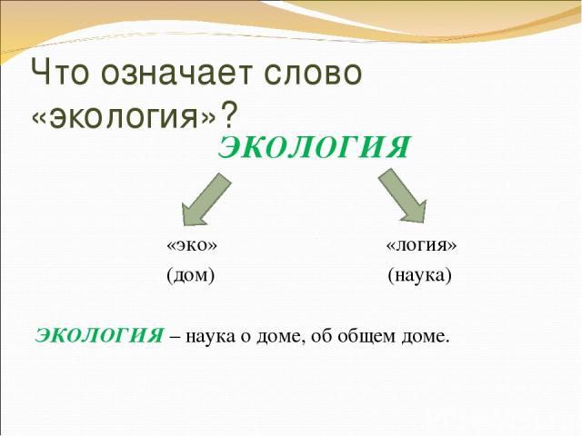 Что означает слово «экология»? ЭКОЛОГИЯ «эко» «логия» (дом) (наука) ЭКОЛОГИЯ – наука о доме, об общем доме.
