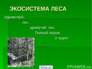 ЭКОСИСТЕМА ЛЕСА Здравствуй, лес, дремучий лес, Полный сказок и чудес! 900igr.net
