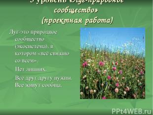 3 уровень «Луг-природное сообщество» (проектная работа) Луг-это природное сообще