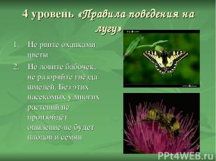 4 уровень «Правила поведения на лугу» 1. Не рвите охапками цветы 2. Не ловите ба