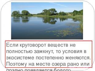 Если круговорот веществ не полностью замкнут, то условия в экосистеме постепенно