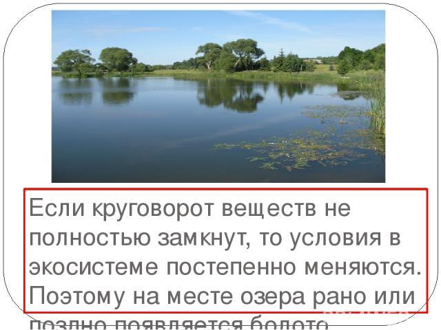 Если круговорот веществ не полностью замкнут, то условия в экосистеме постепенно меняются. Поэтому на месте озера рано или поздно появляется болото.