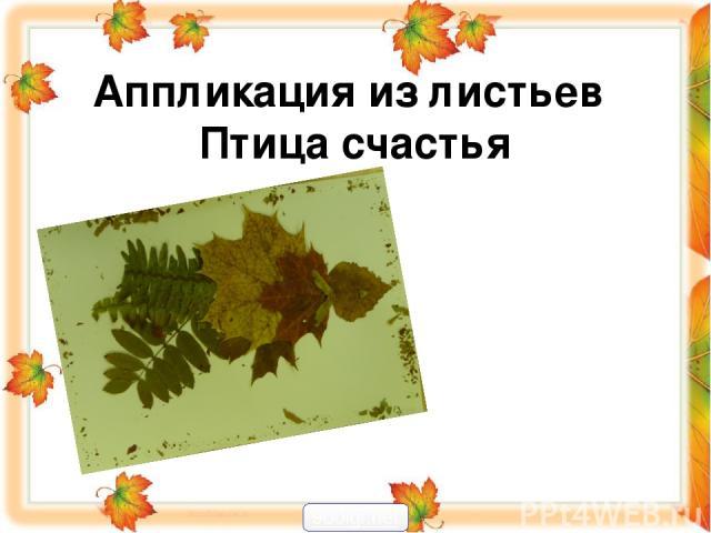 Аппликация из листьев Птица счастья 900igr.net