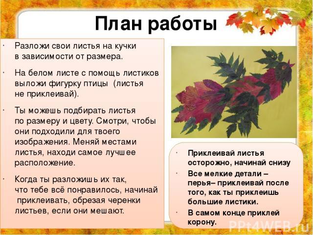 План работы Разложи свои листья накучки взависимости отразмера. Набелом листе спомощь листиков выложи фигурку птицы (листья неприклеивай). Тыможешь подбирать листья поразмеру ицвету. Смотри, чтобы ониподходили длятвоего изображения. Меня…