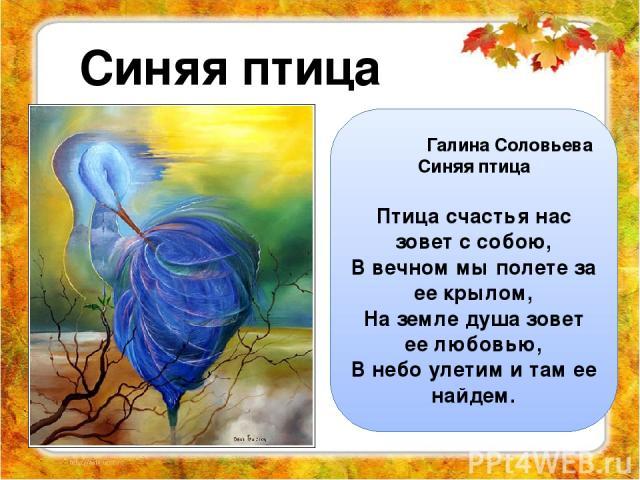 Синяя птица Галина Соловьева Синяя птица Птица счастья нас зовет с собою, В вечном мы полете за ее крылом, На земле душа зовет ее любовью, В небо улетим и там ее найдем.