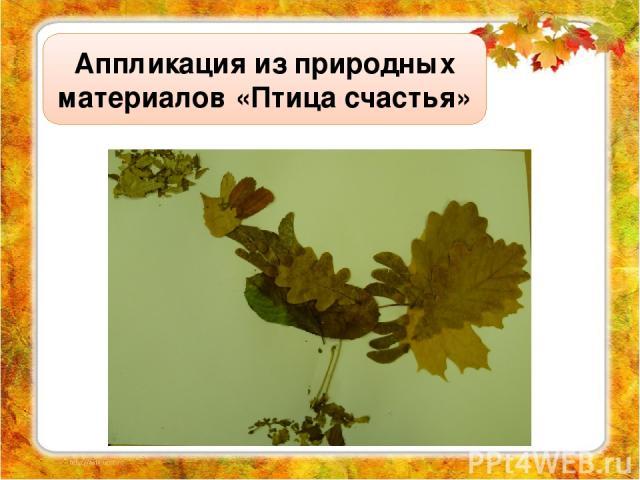 Аппликация из природных материалов «Птица счастья»