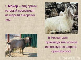 Мохер – вид пряжи, который производят из шерсти ангорских коз. В России для прои