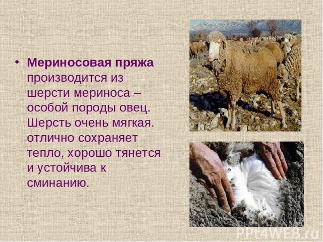 Мериносовая пряжа производится из шерсти мериноса – особой породы овец. Шерсть очень мягкая. отлично сохраняет тепло, хорошо тянется и устойчива к сминанию.
