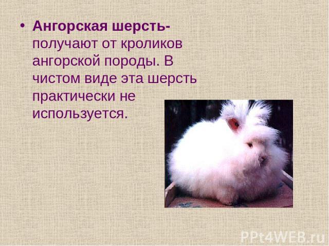 Ангорская шерсть- получают от кроликов ангорской породы. В чистом виде эта шерсть практически не используется.