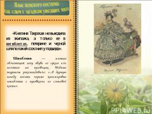 «Княгиня Тверская не выходила из экипажа, а только ее в штиблетах, пелерине и че
