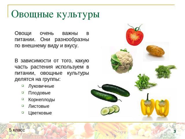 Овощные культуры Овощи очень важны в питании. Они разнообразны по внешнему виду и вкусу. В зависимости от того, какую часть растения используем в питании, овощные культуры делятся на группы: Луковичные Плодовые Корнеплоды Листовые Цветковые * 5 класс