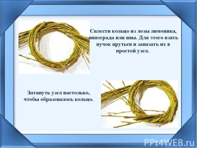 Сплести кольцо из лозы лимоника, винограда или ивы. Для этого взять пучок прутьев и завязать их в простой узел.