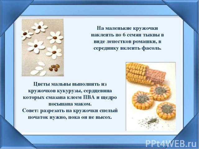 На маленькие кружочки наклеить по 6 семян тыквы в виде лепестков ромашки, в серединку вклеить фасоль.