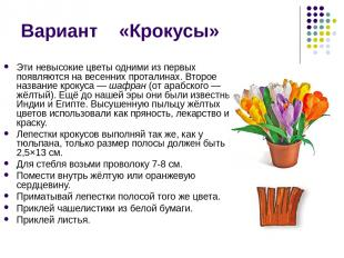 Вариант «Крокусы» Эти невысокие цветы одними из первых появляются на весенних пр